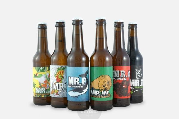 Craft Beer Paket: Mr. Series von Buddelship
