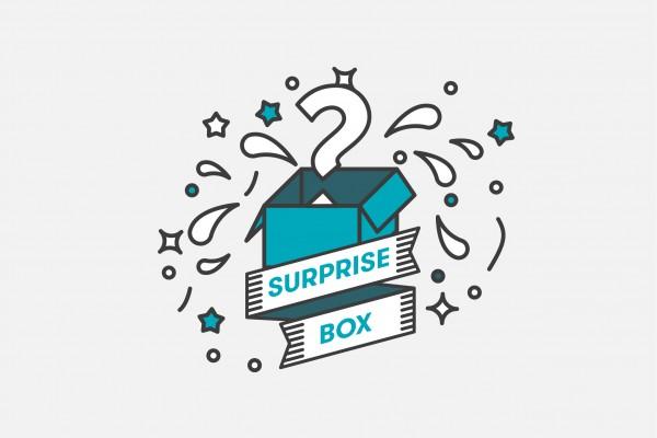 Craft Beer Paket: Überraschungspaket